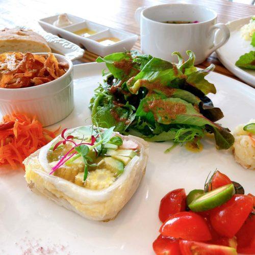 選べる発酵テリーヌ、発酵サラダの盛り合わせ、発酵野菜チップ